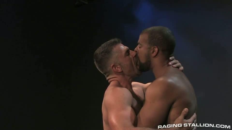 colt free gay sex story