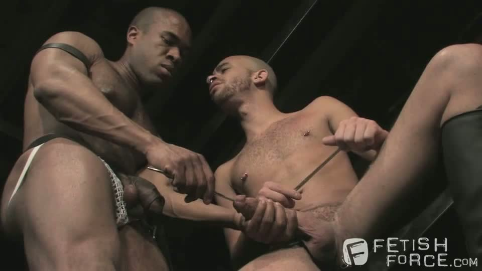 Chat gay man mt room tb.cgi